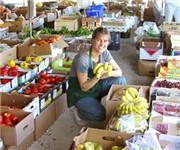 Coconut Grove Organic Farmers Market - Miami, FL (305) 238-7747